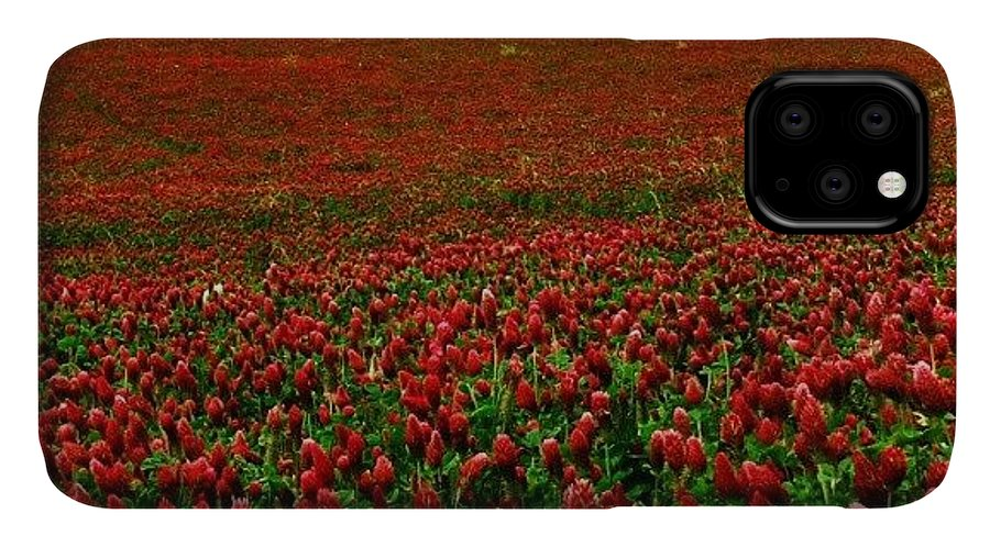 Love IPhone 11 Case featuring the photograph Red! by Emanuela Carratoni