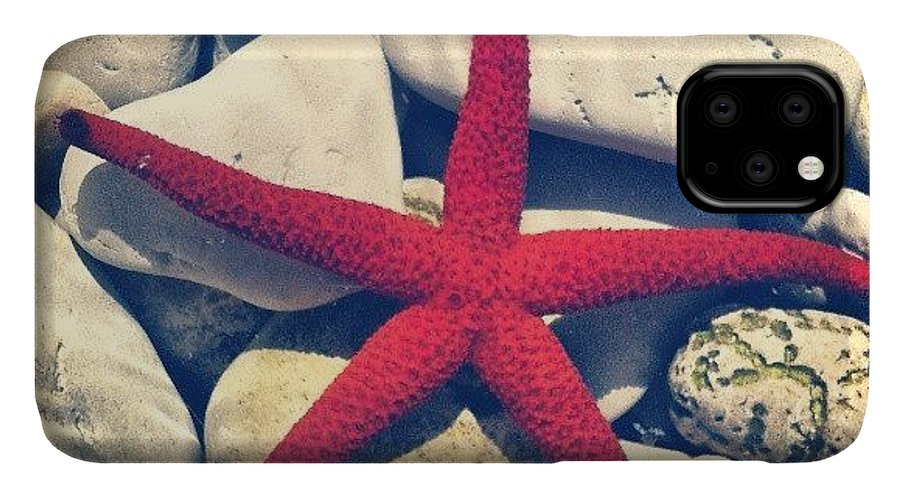 Love IPhone 11 Case featuring the photograph Red Star! by Emanuela Carratoni