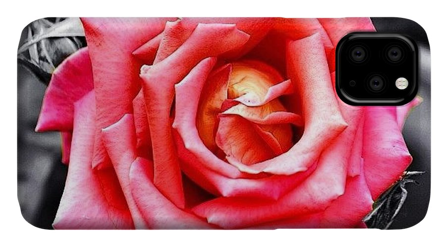 Nature IPhone Case featuring the photograph #rose #colorsplash #fiore #rosa by Luisa Azzolini