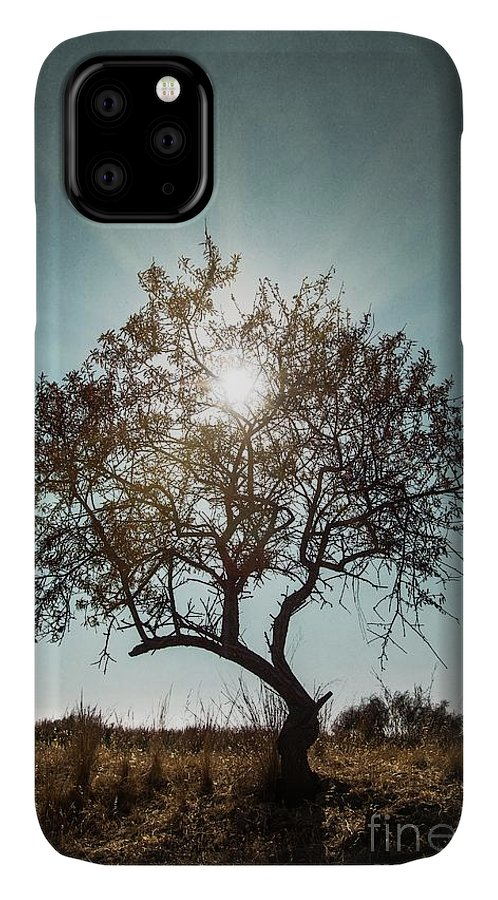 Dark IPhone Case featuring the photograph Single Tree by Carlos Caetano