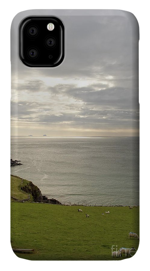 Animals IPhone Case featuring the photograph Skellig Islands by Richard Patrick
