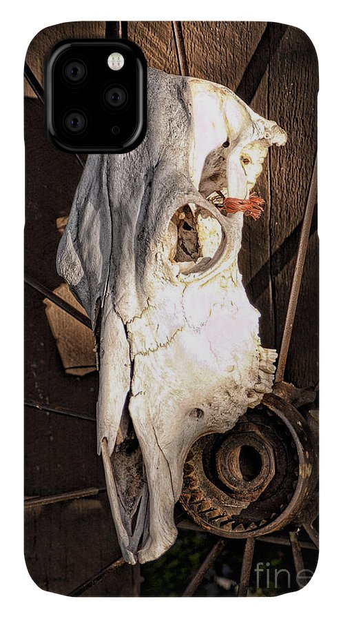 Abstract IPhone Case featuring the photograph Skull 5 by Richard Patrick