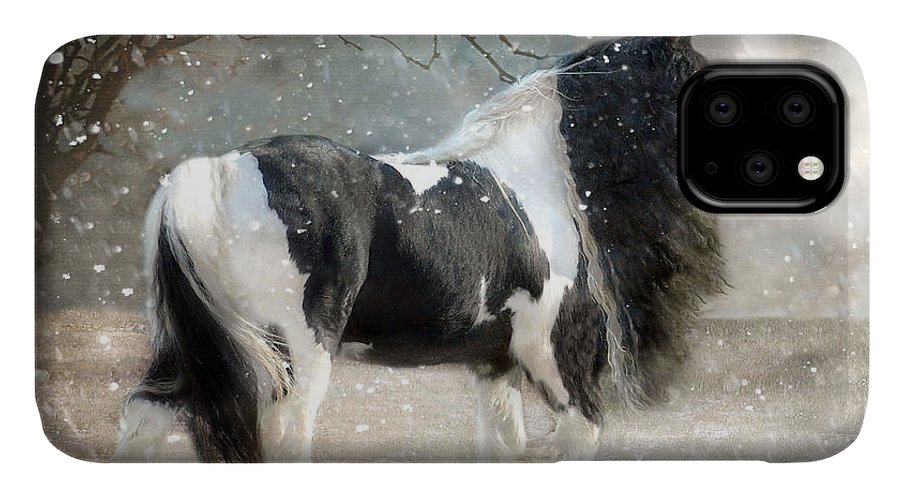 Horse Photographs IPhone Case featuring the photograph Solitary by Fran J Scott
