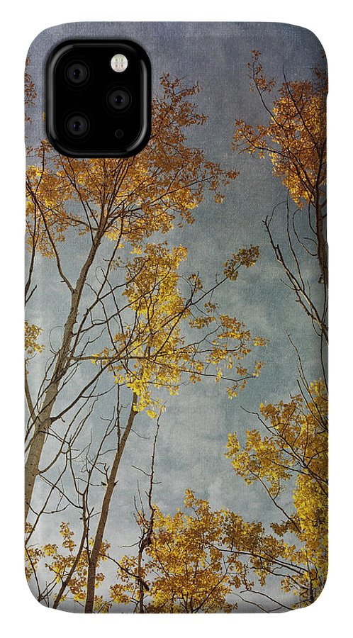 Leaves IPhone 11 Case featuring the photograph Sunny Leaves Tall by Priska Wettstein