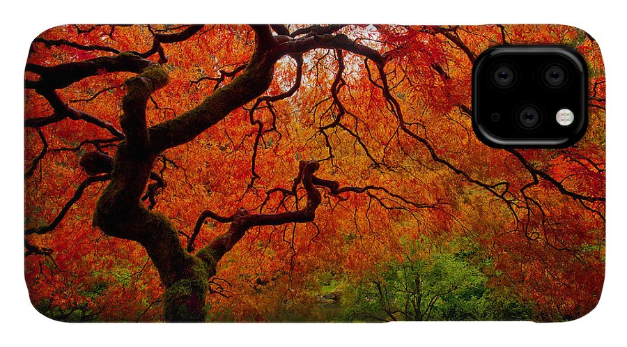 Portland IPhone Case featuring the photograph Tree Fire by Darren White