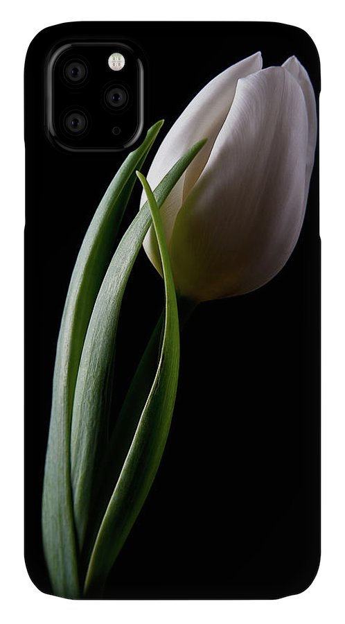 Flower IPhone Case featuring the photograph Tulips IIi by Tom Mc Nemar