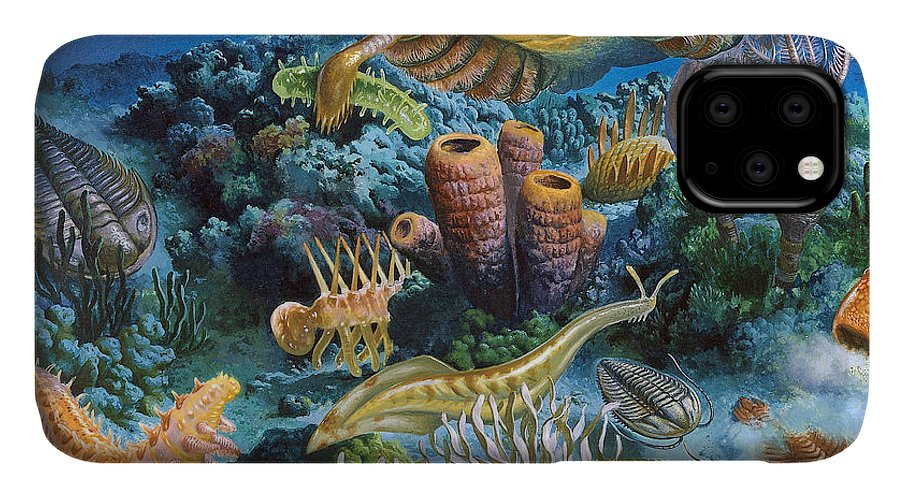 Illustration IPhone Case featuring the photograph Underwater Paleozoic Landscape by Publiphoto