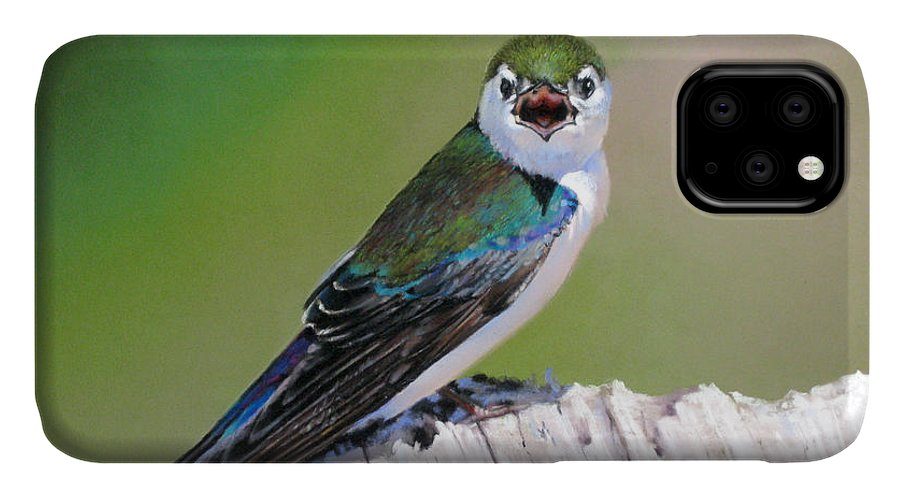 Birds IPhone Case featuring the painting Violet Green Swallow by Dianna Ponting