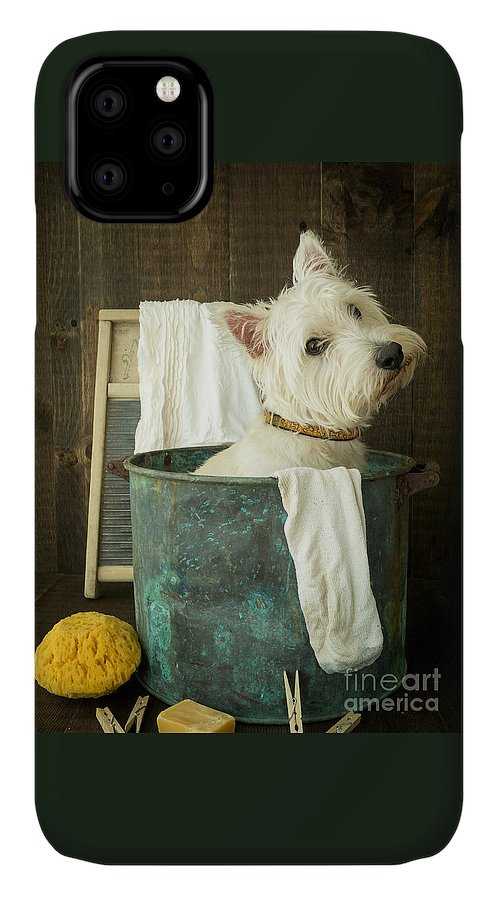 Dog IPhone 11 Case featuring the photograph Wash Day by Edward Fielding