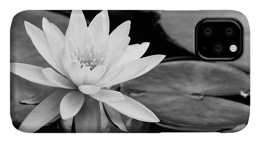 Landscape IPhone Case featuring the photograph Water Lily In The Lily Pond by Sabrina L Ryan