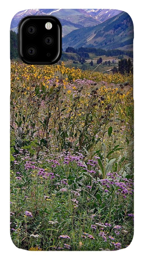 Field Of Wildflowers IPhone Case featuring the photograph Wildflowers And Mountains by Sally Weigand
