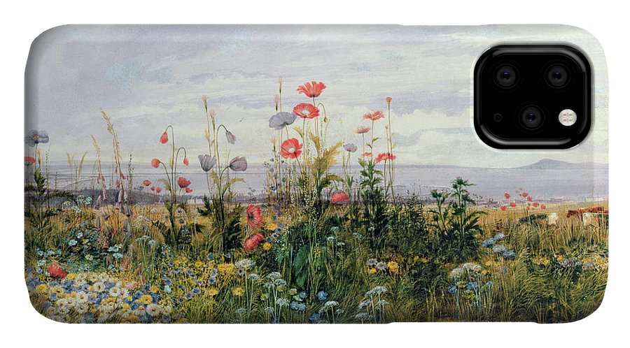 Meadow; Flowers; Irish; Wild; Landscape; Poppies IPhone Case featuring the painting Wildflowers with a View of Dublin Dunleary by A Nicholl