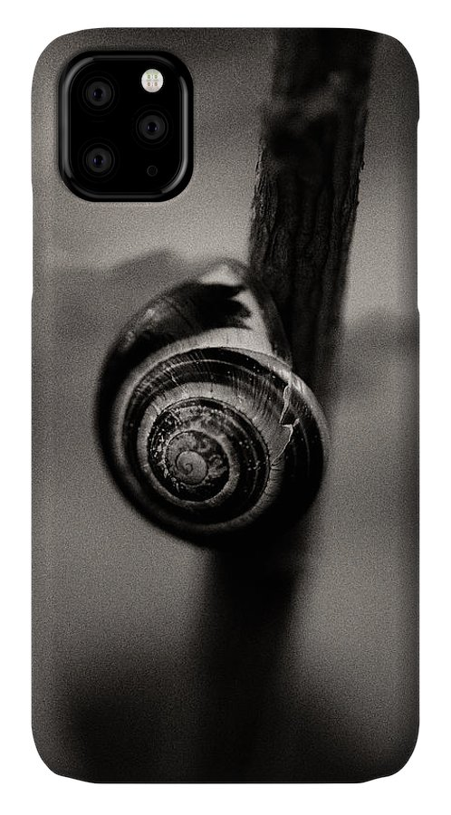 Snail On A Branch IPhone 11 Case featuring the photograph Woodland - Study 11 by Dave Bowman