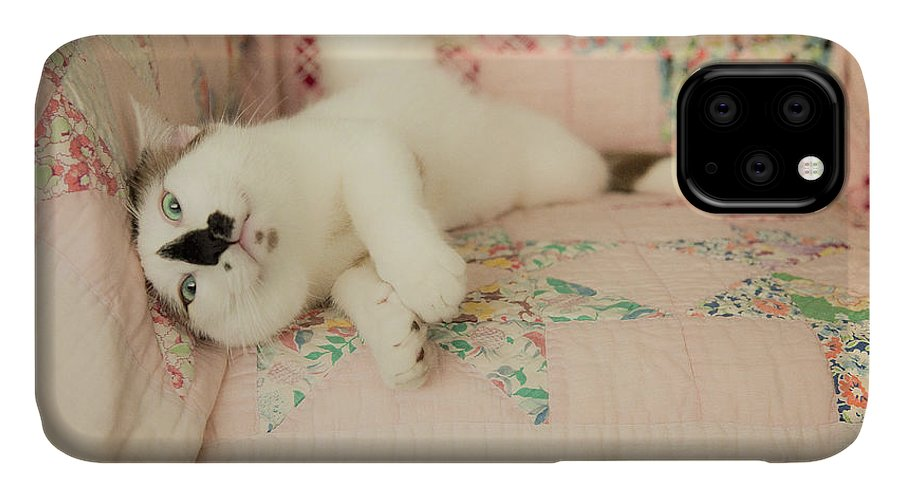 Cat IPhone Case featuring the photograph You Love Me Don't You by Theresa Tahara