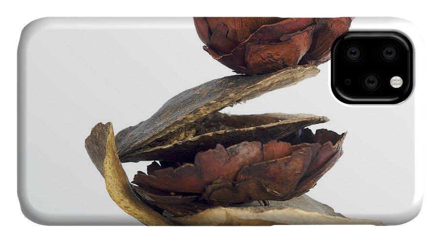 Vegetarian IPhone 11 Case featuring the photograph Dried Pieces Of Vegetables. by Bernard Jaubert