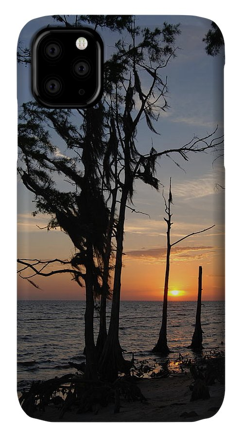 Cypress IPhone Case featuring the photograph Cypress Sunset by Beth Gates-Sully
