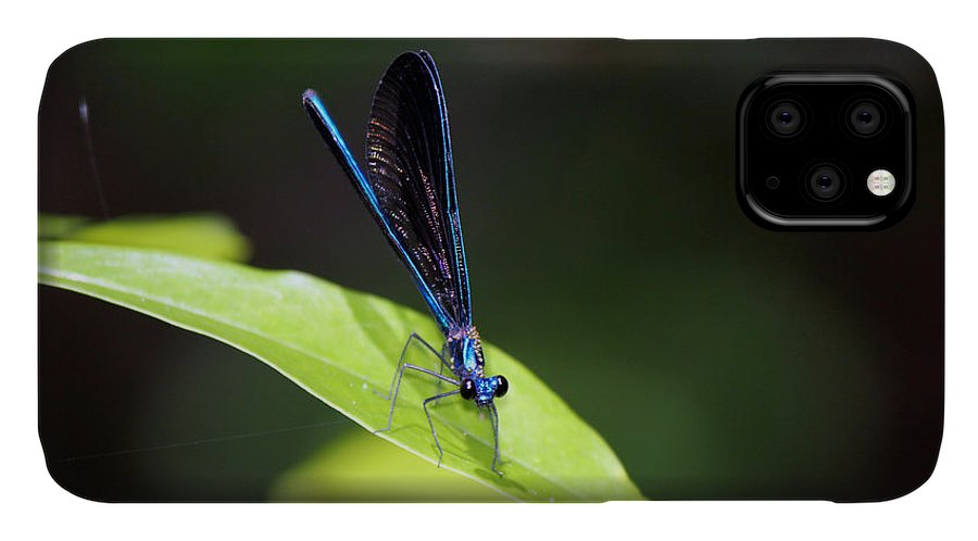 Insects IPhone Case featuring the photograph Dragonfly Fly by Deborah Hughes