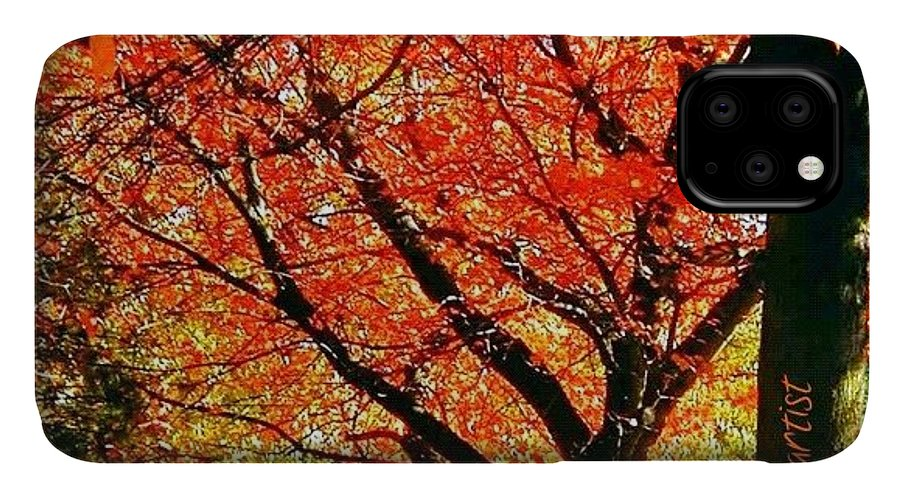 Fall Color IPhone Case featuring the photograph Fall Color NW Lovejoy and 22nd Street by Anna Porter