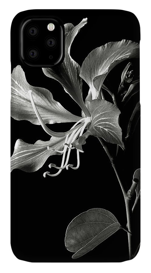 Flower IPhone Case featuring the photograph Hong Kong Orchid In Black And White by Endre Balogh