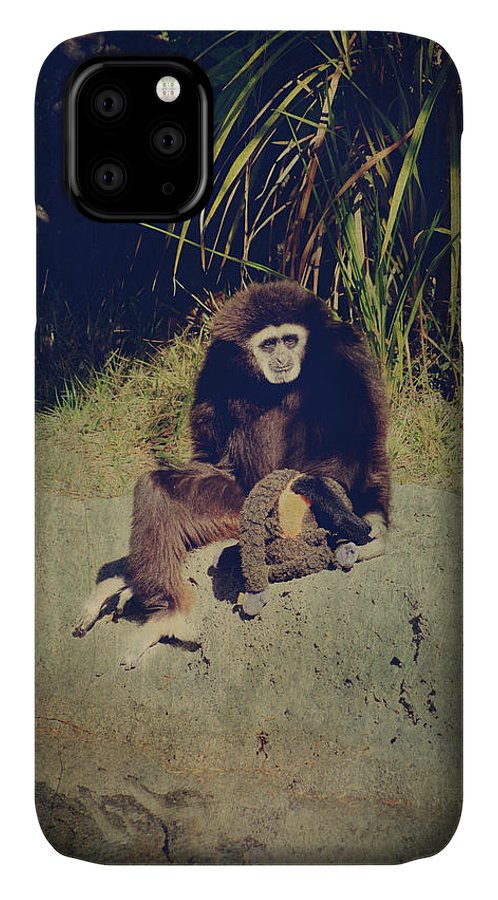 Primates IPhone Case featuring the photograph I Need A Hug by Laurie Search