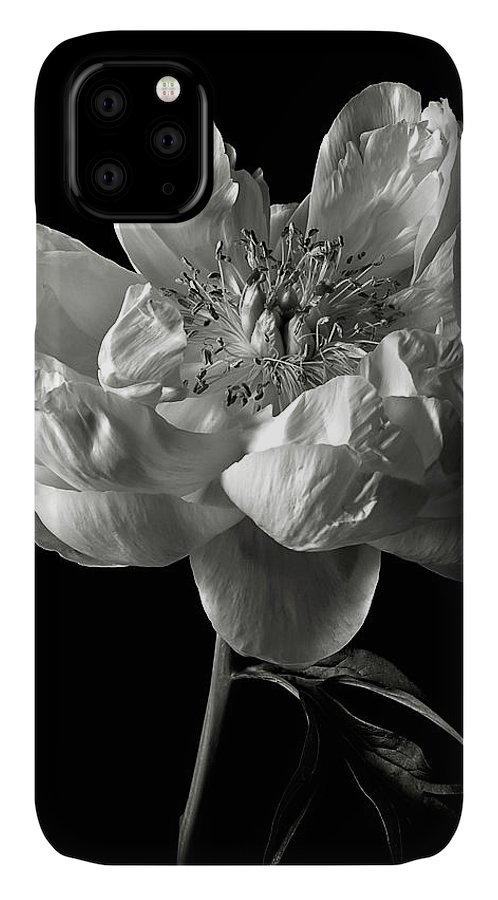 Flower IPhone Case featuring the photograph Open Peony In Black And White by Endre Balogh