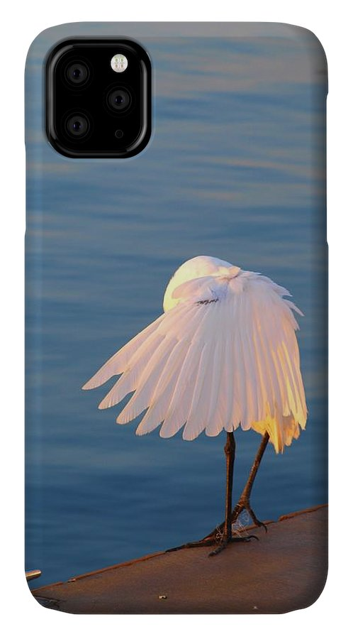 Heron IPhone Case featuring the photograph Shy by Judy Waller