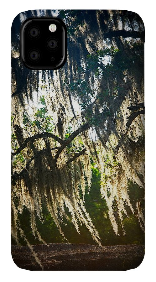Spanish IPhone Case featuring the photograph Spanish Moss by Beth Gates-Sully