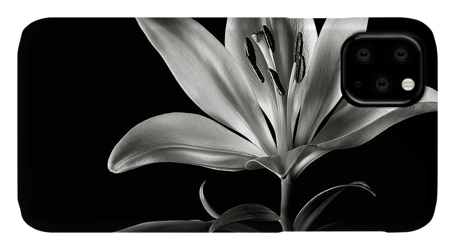 Flower IPhone Case featuring the photograph Tiger Lily In Black And White by Endre Balogh