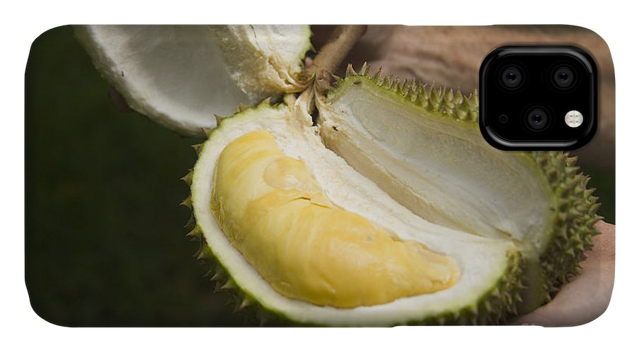 Durian IPhone Case featuring the photograph Durian Fruit by Inga Spence