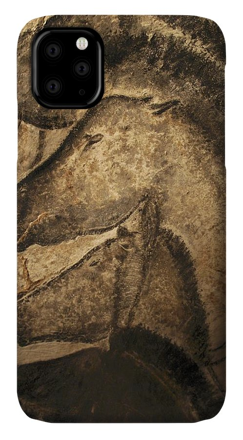 Animal IPhone Case featuring the photograph Stone-age Cave Paintings, Chauvet, France by Javier Truebamsf