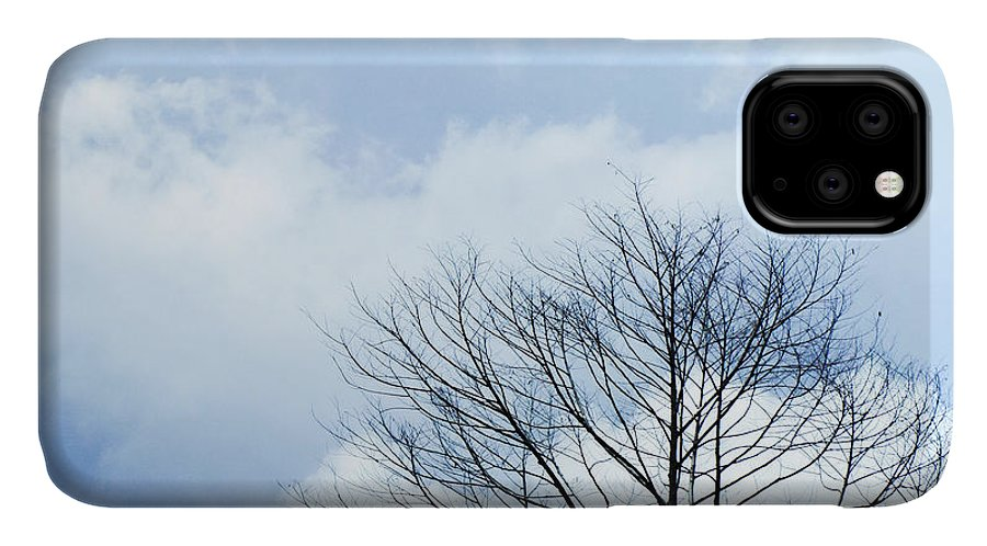 Winter Fall White Sky IPhone Case featuring the photograph Winter Tree by Adelista J