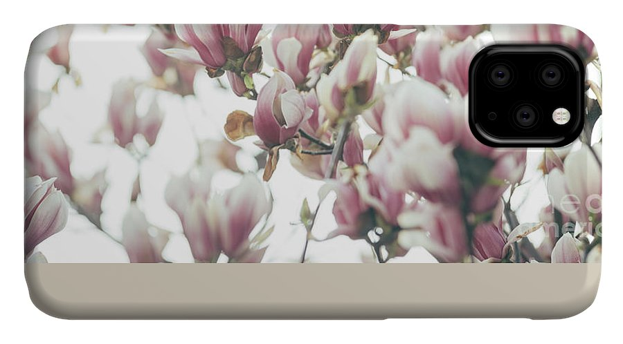 Magnolia IPhone Case featuring the photograph Magnolia by Jelena Jovanovic