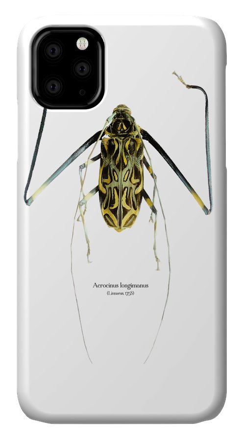 Nature IPhone Case featuring the digital art Acrocinus II by Geronimo Martin Alonso
