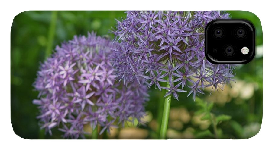 Purple IPhone Case featuring the photograph Allium by Suze Humeston