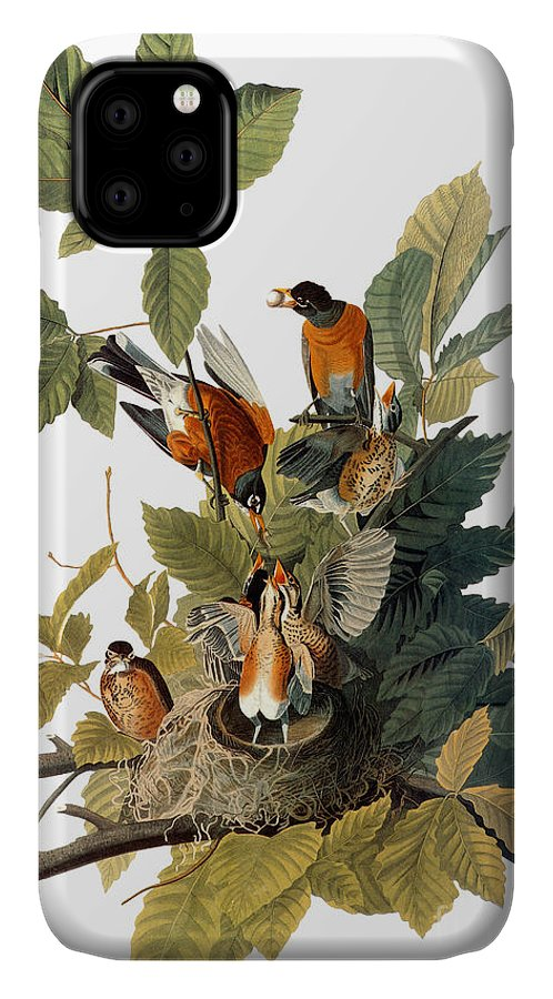 1838 IPhone 11 Case featuring the photograph Audubon: Robin by Granger