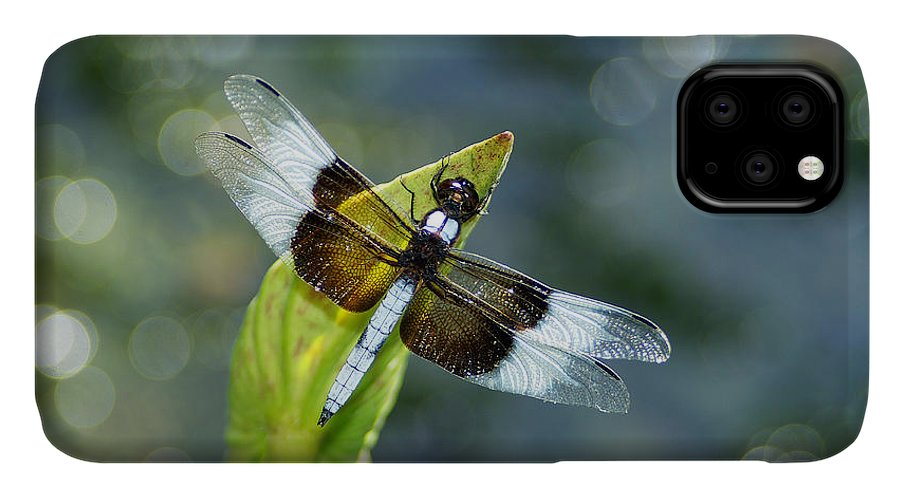 Dragonfly IPhone Case featuring the photograph Basking in the Light by Bill Morgenstern