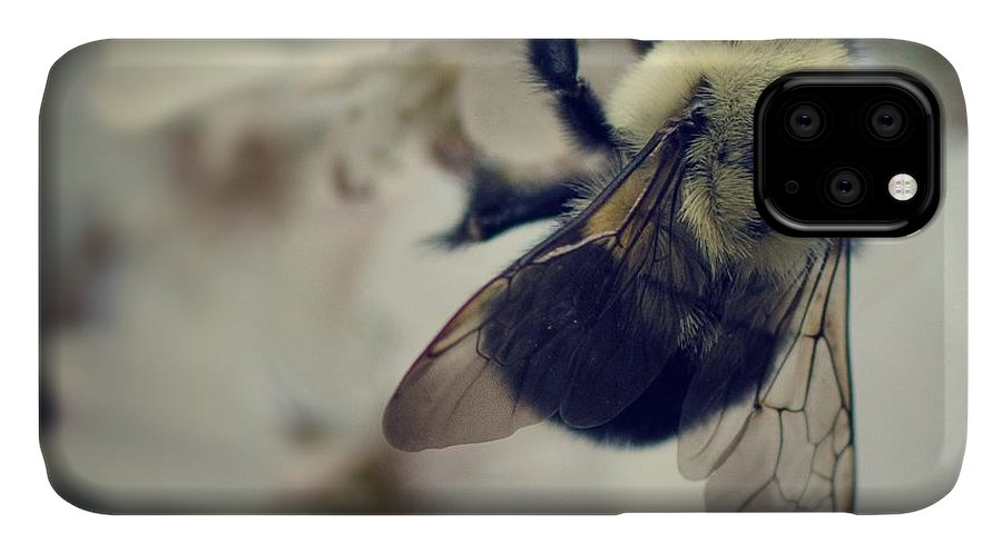 Bee IPhone Case featuring the photograph Bee by Sarah Coppola