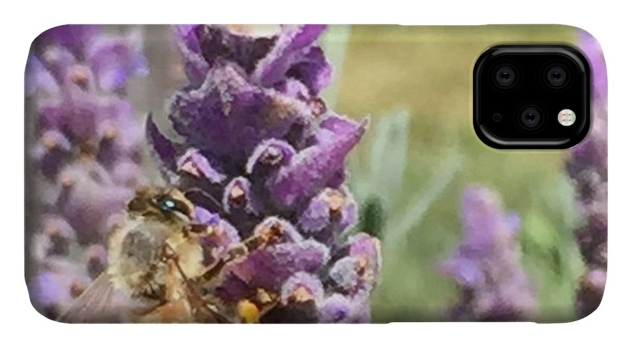 Nofilter IPhone Case featuring the photograph Busy Bee by Nancy Ingersoll