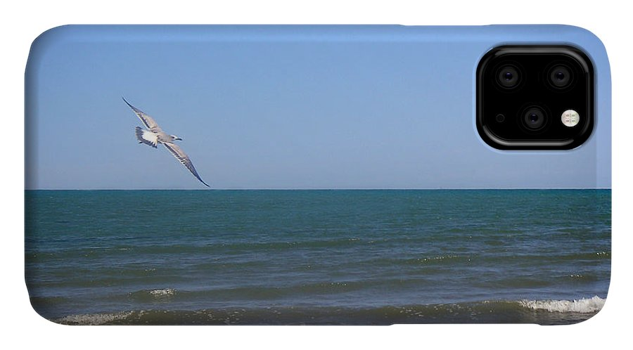 Nature IPhone Case featuring the photograph Being One With The Gulf - Soaring by Lucyna A M Green