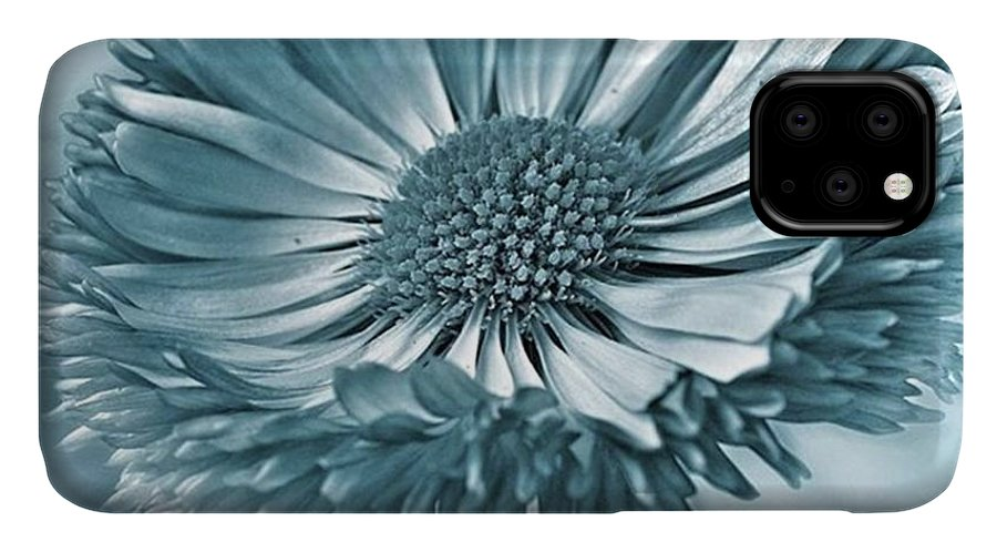 Beautiful IPhone Case featuring the photograph Bellis In Cyan  #flower #flowers by John Edwards