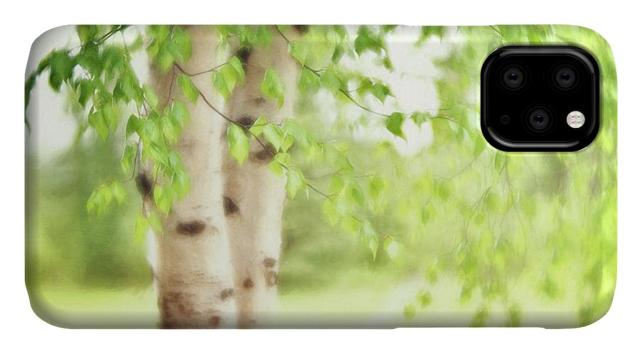 Green IPhone 11 Case featuring the photograph Birch In Spring by Priska Wettstein