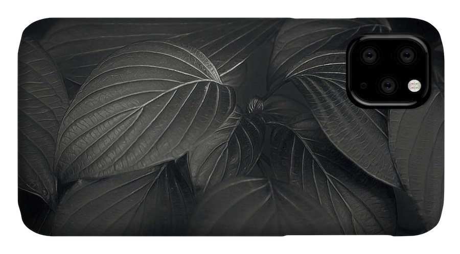 Leaf IPhone Case featuring the photograph Black Leaves by Scott Norris