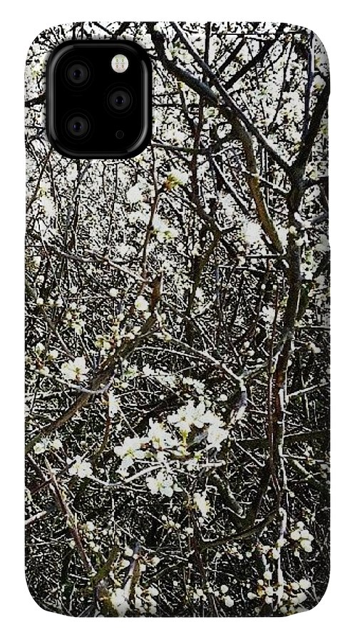 Blossom IPhone 11 Case featuring the photograph Blossomarama by Nic Squirrell