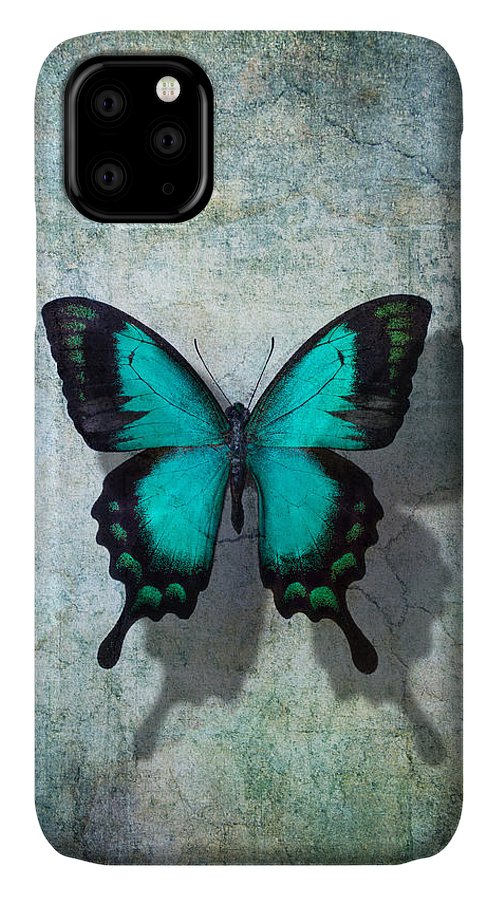 Still Life IPhone 11 Case featuring the photograph Blue Butterfly Resting by Garry Gay