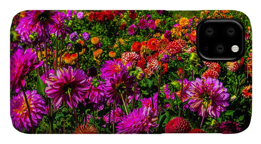 Dahlia IPhone 11 Case featuring the photograph Bright Colorful Dahlias by Garry Gay