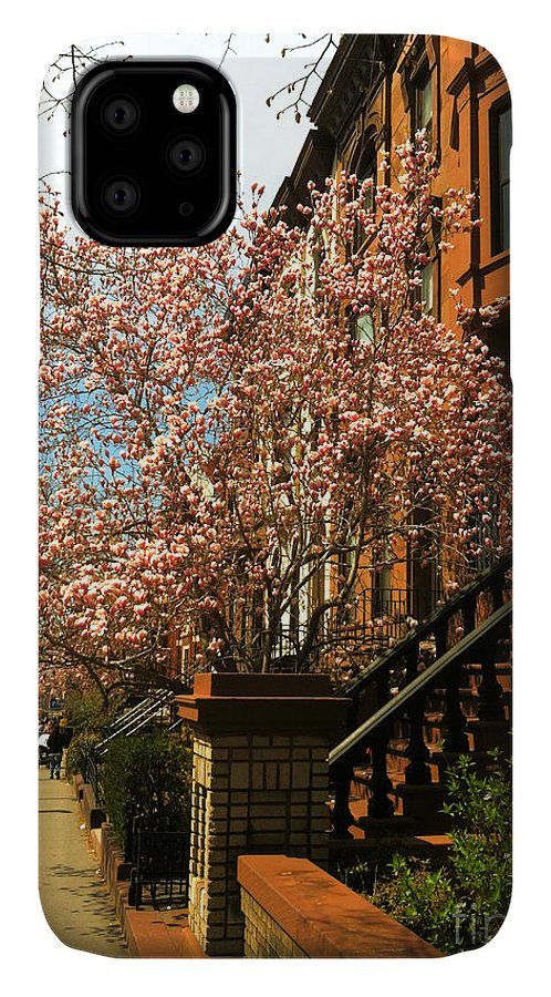 Brownstones IPhone Case featuring the photograph Brownstones And Blossoms by Onedayoneimage Photography