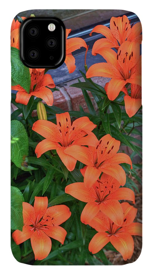 Bunch IPhone Case featuring the photograph Bunch Of Orange Lilies by Douglas Barnett