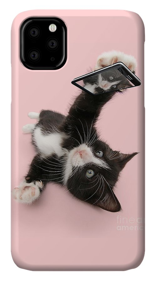 Black And White IPhone Case featuring the photograph Cat Selfie by Warren Photographic