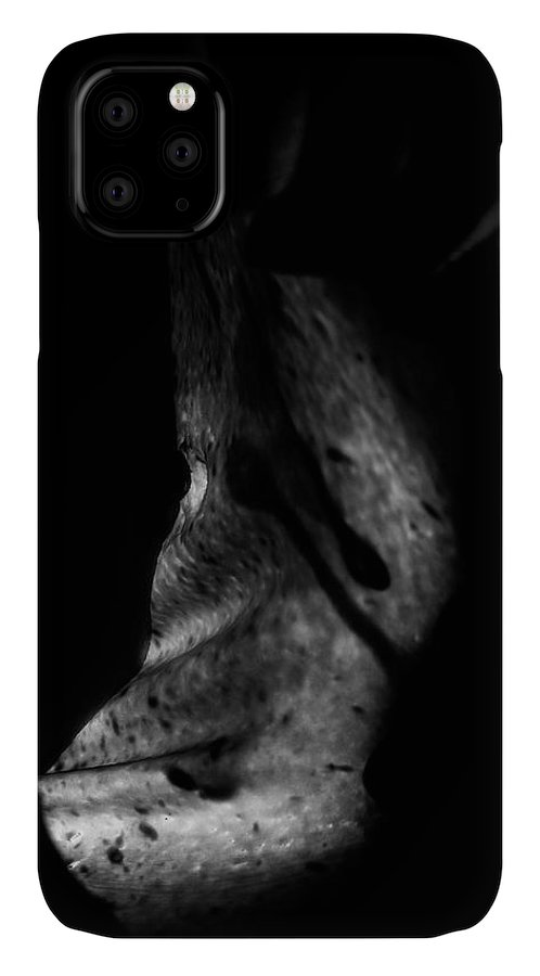 Nude IPhone Case featuring the photograph Cave Of Seduction by Pavel Jelinek