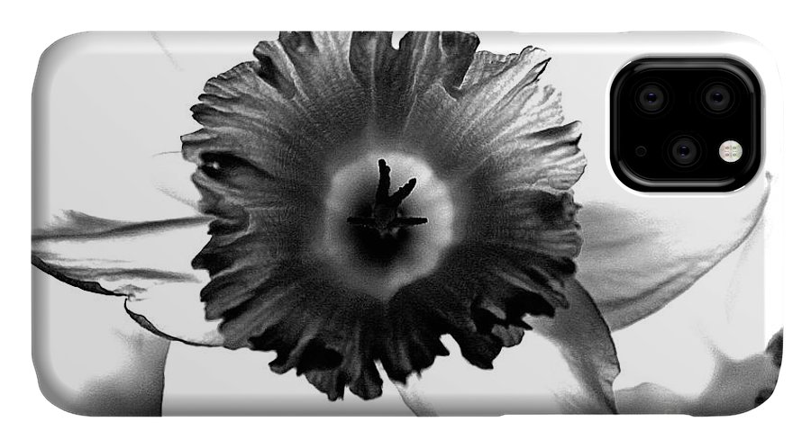 Bw black & White Modern Edge Daffodil Nature Bloom Flower Photograph IPhone Case featuring the photograph ColorBlind. by Stevie Ellis